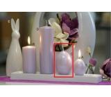 Lima Pastel svíčka metal světle fialová velké vajíčko 60 x 90 mm 1 kus