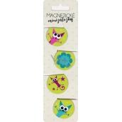 Albi Magnetické minizáložky Ztřeštěné kočky 4 kusy