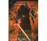 Ditipo Disney Dárková papírová taška pro děti L Star Wars 26 x 13,7 x 32,4 cm 2902 009