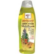 Bione Cosmetics Med & Propolis Dentamint ústní voda 500 ml