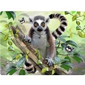 Prime3D pohlednice - Lemur 16 x 12 cm