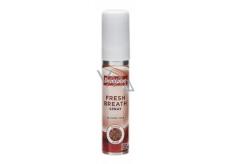 Dentiplus Aniseed Blast ústní sprej bez alkoholu 25 ml