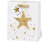 BSB Luxusní Vánoční dárková papírová taška střední bílá s 3D hvězdičkou 23 x 19 x 9 cm VDT 426-A5
