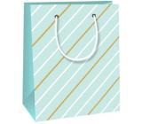 Ditipo Dárková papírová taška 11,4 x 6,4 x 14,6 cm světle zelená, bílohnědé proužky