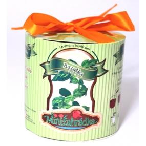 Albi Minizahrádka Bazalka válec dárkové balení sady na pěstování bylinky