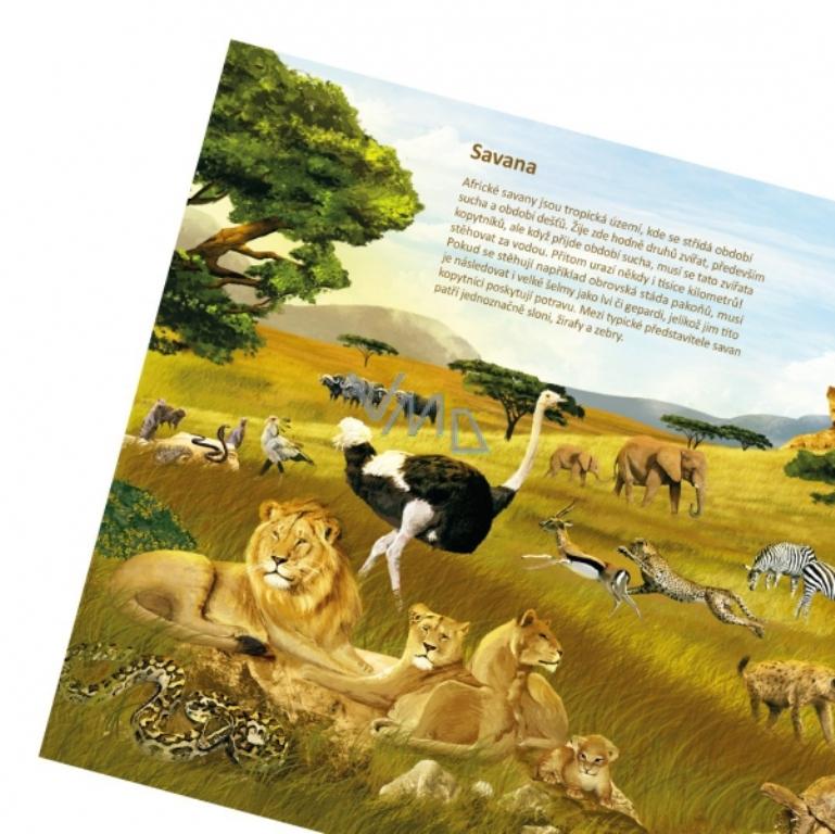 2bf59367c Albi Kouzelné čtení interaktivní mluvící kniha Svět zvířat - VMD drogerie