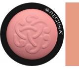 Regina Minerální tvářenka odstín 02 3,5 g