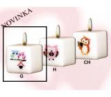 Lima Sovy 2 sovičky svíčka s obtiskem bílá krychle 45 x 45 mm 1 kus