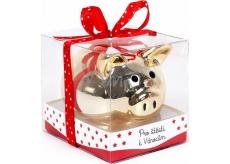 Albi Pokladnička Prasátko zlaté Pro štěstí k Vánocům 6 cm