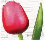 Bohemia Gifts Dřevěný tulipán růžovo-červený 34 cm
