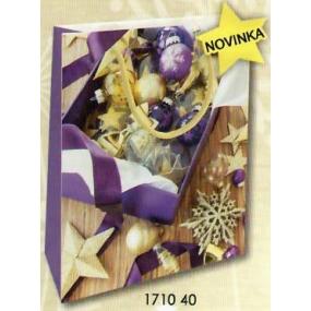 Nekupto Dárková papírová taška 23 x 18 x 10 cm Vánoční 1710 40 WBM