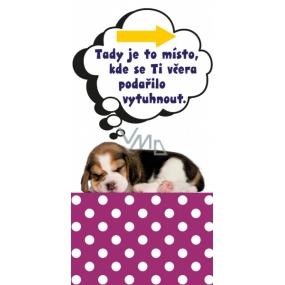 Albi Magická záložka Spící štěně