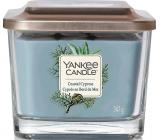 Yankee Candle Coastal Cypress - Pobřežní cypřiš sojová vonná svíčka Elevation střední sklo 3 knoty 347 g
