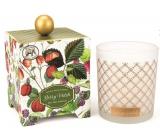 Michel Design Works Lesní plody Sojová ručně vyrobená vonná svíčka ve skle 397 g