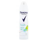 Rexona Stay Fresh Blue Poppy & Apple - Modrý mák a jablko antiperspirant deodorant sprej pro ženy 150 ml