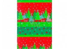 Ditipo Dárkový balicí papír 70 x 150 cm Vánoční stříbrný těžítka