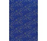 Ditipo Dárkový balicí papír 70 x 200 cm Vánoční modrý zlaté a černé hvězdy