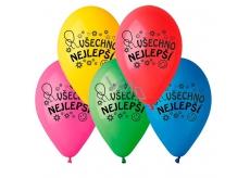 """Balónky """"Všechno nejlepší"""", 26 cm, 100 ks v balení, mix barev"""