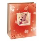 Ditipo Dárková papírová taška 32,4 x 10,2 x 44,5 cm medvídek DXA 2291914