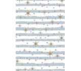 Ditipo Dárkový balicí papír 70 x 200 cm Bílý modrošedé pruhy a zlaté hvězdičky