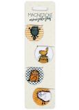 Albi Magnetické minizáložky Chlupaté kočky průměr 3 cm 4 kusy