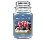 Yankee Candle Mulberry & Fig Delight - Lahodné moruše a fíky vonná svíčka Classic velká sklo 623 g