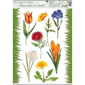 Room Decor Okenní fólie bez lepidla travička a květinky Typ 4 tulipán 42 x 30 cm