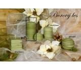 Lima Wellness Borový les aroma svíčka válec 60 x 120 mm 1 kus