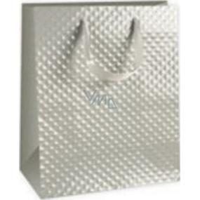 Ditipo Dárková papírová taška střední šedá 18 x 10 x 22,7 cm DC