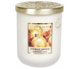 Heart & Home Jiskřivé Vánoce Sojová vonná svíčka velká hoří až 70 hodin 340 g
