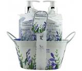 Salsa Collection Levandule, šalvěj a máta sprchový gel 250 ml + pěna do koupele 250 ml + toaletní mýdlo 100 g, kosmetická sada v kovovém květináči