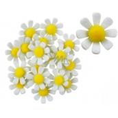 Dekorace květy z filcu s lepíkem bílé 3,5 cm v krabičce 18 kusů