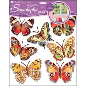 Room Decor Samolepky na zeď motýli skuteční 38 x 31 cm