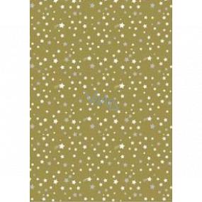 Ditipo Dárkový balicí papír 70 x 200 cm Vánoční zlatý bílé a stříbrné hvězdičky