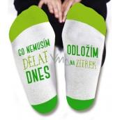 Nekupto Rodinné dárky s humorem Ponožky Co nemusím dělat dnes, velikost 43-46