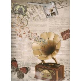 Nekupto Dárková papírová taška velká 32,5 x 26 x 13 cm gramofon 1 kus 1137 02 KFL