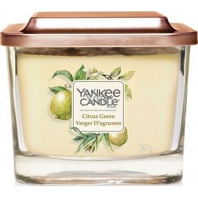 Yankee Candle Citrus Grove - Citrusový háj sojová vonná svíčka Elevation střední sklo 3 knoty 347 g