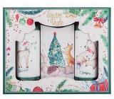 Bohemia Gifts & Cosmetics Vánoce Šťastné a Veselé sprchový gel 100 ml + šampon 100 ml + mýdlo 110 g, kosmetická sada