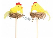Kuřátko žluté v hnízdě zápich 5 cm + špejle 1 kus