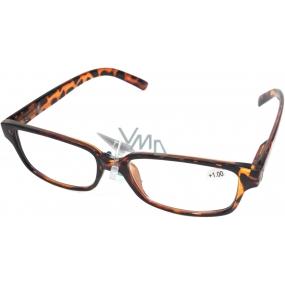Berkeley Čtecí dioptrické brýle +3,0 plastové hnědé tygrované 1 kus MC2125
