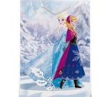 BSB Disney Dárková papírová taška dětská 32,4 x 26 x 12 cm Frozen s glitry DT L