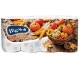 Big Soft Podzim toaletní papír s potiskem 3 vrstvý 160 útržků 8 kusů