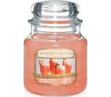 Yankee Candle White Strawberry Bellini - Bílý jahodový koktejl vonná svíčka Classic střední sklo 411 g