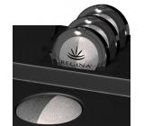 Regina Duo minerální oční stíny 03 světle šedá/perleť 3,5 g