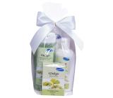 Kappus Gingo - Ginkgo biloba sprchový šampon 250 ml + tělové mléko 200 ml + mýdlo 125 g kosmetická sada
