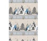 Ditipo Dárkový balicí papír 70 x 200 cm Vánoční stříbrný hory Merry Christmas
