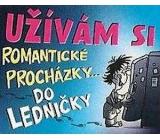 Nekupto Dárky s humorem Magnet ledničkový Užívám si romantické 23 x 12 cm