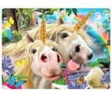 Prime3D pohlednice - Jednorožec Selfie 16 x 12 cm