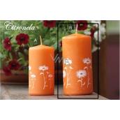 Lima Citronela svíčka proti komárům vonná repelentní s motivem květin oranžová válec 60 x 120 mm