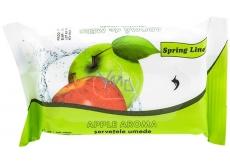 Doctor Wipes Spring Line Jablko vlhčené ubrousky 15 kusů